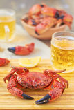 Boiled crabs. And beer on the table Stock Photography