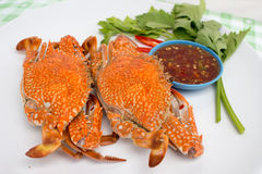 Boiled crabs. Crab cooked in white dish Stock Photos