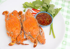Boiled crabs. Crab cooked in white dish Stock Photography