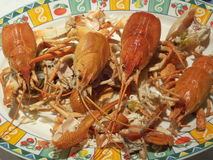 Boiled crabs dish Stock Photo