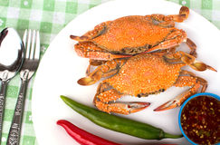 Boiled crabs. Steamed crab kind of Thai food Stock Photo