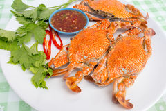 Boiled crabs. Steamed crab kind of Thai food Royalty Free Stock Photography