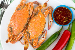 Boiled crabs. Steamed crab kind of Thai food Stock Images