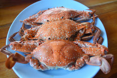 Boiled crabs Stock Photo