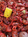 Boiled Crawfish. Verical shot of boiled crawfish with corn and potatoes royalty free stock image