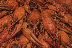 Boiled crawfish. Background of many red crayfish stock photo