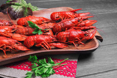 boiled crawfish, beer snacks Stock Images