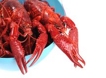 Boiled crawfish Royalty Free Stock Images