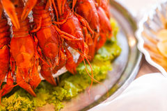 Boiled crawfish, buffet restaurant, restaurant, delicacies, Boil. Ed crawfish on a plate, tasty boiled crawfish, snack to beer royalty free stock images