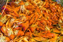 Boiled crawfish and crabs royalty free stock photo