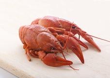 Boiled crawfish Royalty Free Stock Photography
