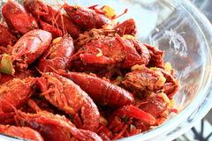 Boiled Crawfish marinated in spices royalty free stock image