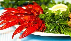 Boiled crawfish on plate close up Stock Photo