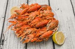Boiled Crawfish plating Royalty Free Stock Photos