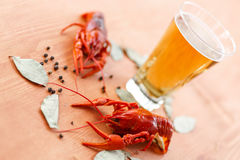 Boiled Crawfish With Beer Stock Images