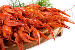 Boiled crawfish on the wooden plate Royalty Free Stock Photos