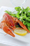 Boiled crayfish Stock Images