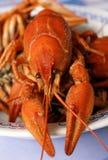 Boiled Crayfish Stock Image