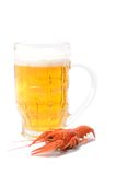 Boiled crayfish and beer bottle Royalty Free Stock Photography