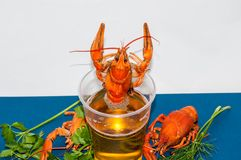 Boiled crayfish beer snack. .. Stock Photo