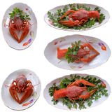 Boiled crayfish closeup. Royalty Free Stock Images