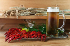Boiled crayfish with cold beer Stock Photography