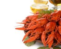 Boiled crayfish Royalty Free Stock Photos