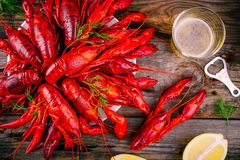 Boiled crayfish with dill and beer Stock Photo