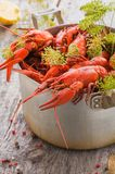 Boiled crayfish with dill on an old metal pan, wooden background. Style rustic. Selective focus royalty free stock photos