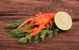 Boiled crayfish Stock Photography