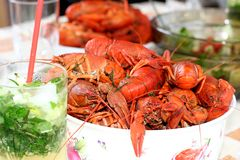 Boiled crayfish and mojito cocktail Stock Image