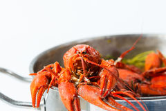 Boiled crayfish in pan Stock Photo