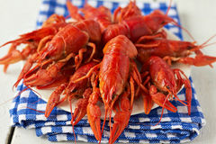 Boiled crayfish Royalty Free Stock Image