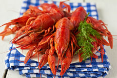 Boiled crayfish. A plate of boiled crayfish on a blue checkered napkin Stock Images
