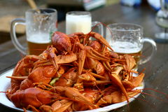 Boiled crayfish and three glasses of beer Stock Image