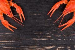 Boiled crayfish Royalty Free Stock Photo