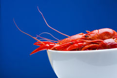 Boiled Crayfish in white bowl Royalty Free Stock Image