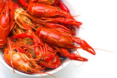 Boiled Crayfish in white bowl Stock Images