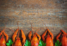 Boiled crayfish on a wooden background. Royalty Free Stock Photography