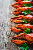 Boiled crayfish on a wooden background. Royalty Free Stock Images