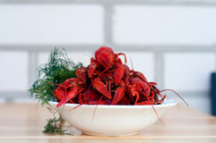Boiled crayfishes with greenery on a plate Royalty Free Stock Images