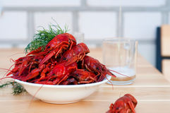 Boiled crayfishes with greenery on a plate Stock Photo