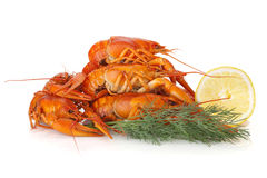 Boiled crayfishes with lemon slice and dill Stock Photo