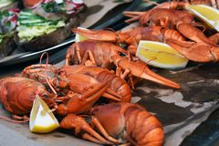 Boiled crayfishes and pieces of lemon. Stock Photo