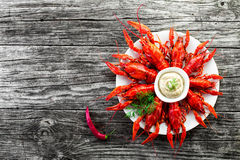 Boiled crayfishes with sauce of grated horseradish , top view Stock Photo