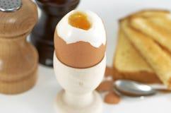 Boiled egg Stock Photo