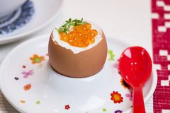 Boiled egg with caviar for breakfast Stock Images
