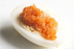 Boiled egg  and caviar Stock Photos