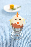 Boiled egg chicken in egg cup. Royalty Free Stock Photos