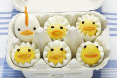 Boiled egg chickens in egg box. On blue table cloth royalty free stock photos